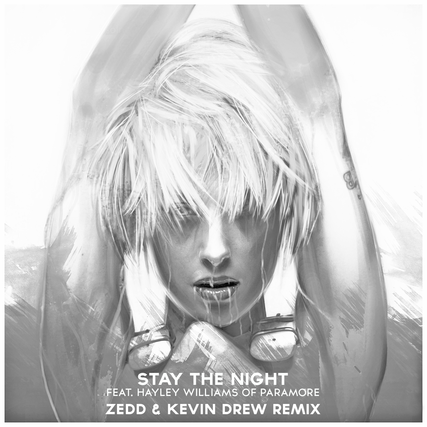 zedd stay the night